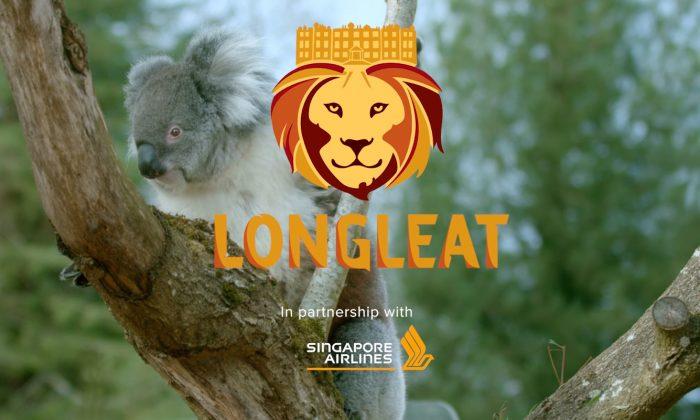 Longleat Promotion